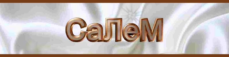 Мебельная фабрика Салем. Мебель Салем для кухни