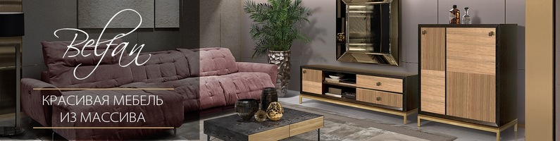 Мебельная фабрика Белфан. Корпусная мебель Белфан
