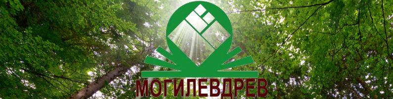 Баннер фабрики Могилевдрев