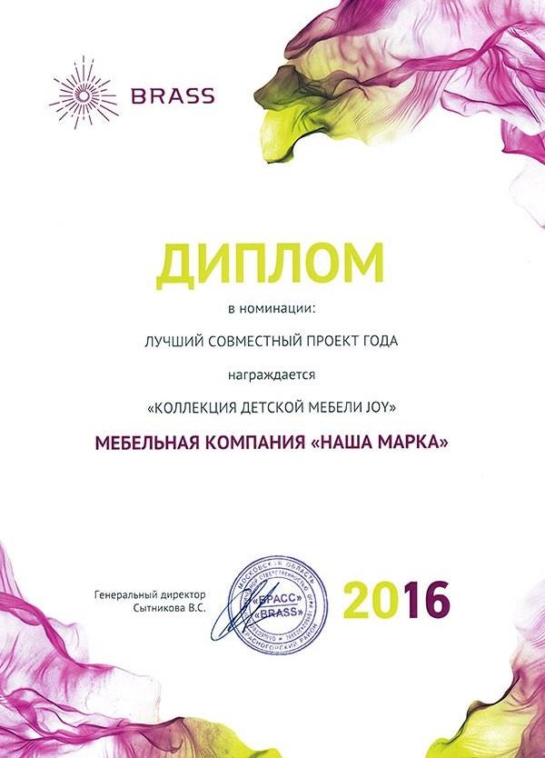 Диплом «Лучший совместный проект»