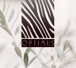 Логотип фабрики Optimus